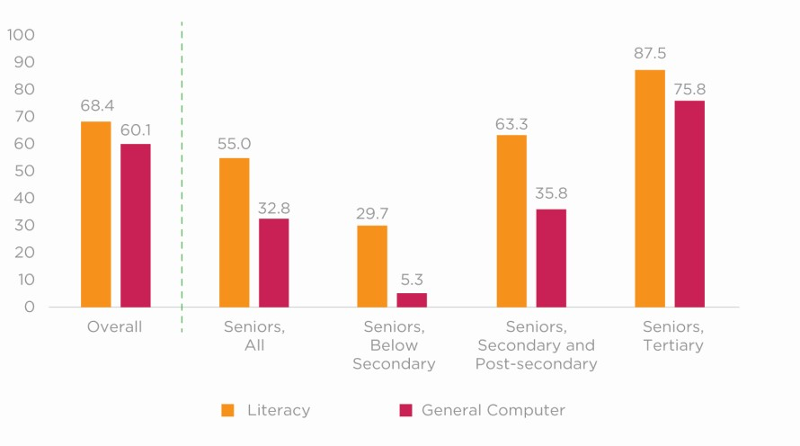 Figure 3. Seniors' Self-assessed Confidence in Their Own Literacy and Computer Skills